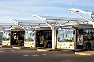 Justiça do Trabalho limita greve total de ônibus em São Paulo